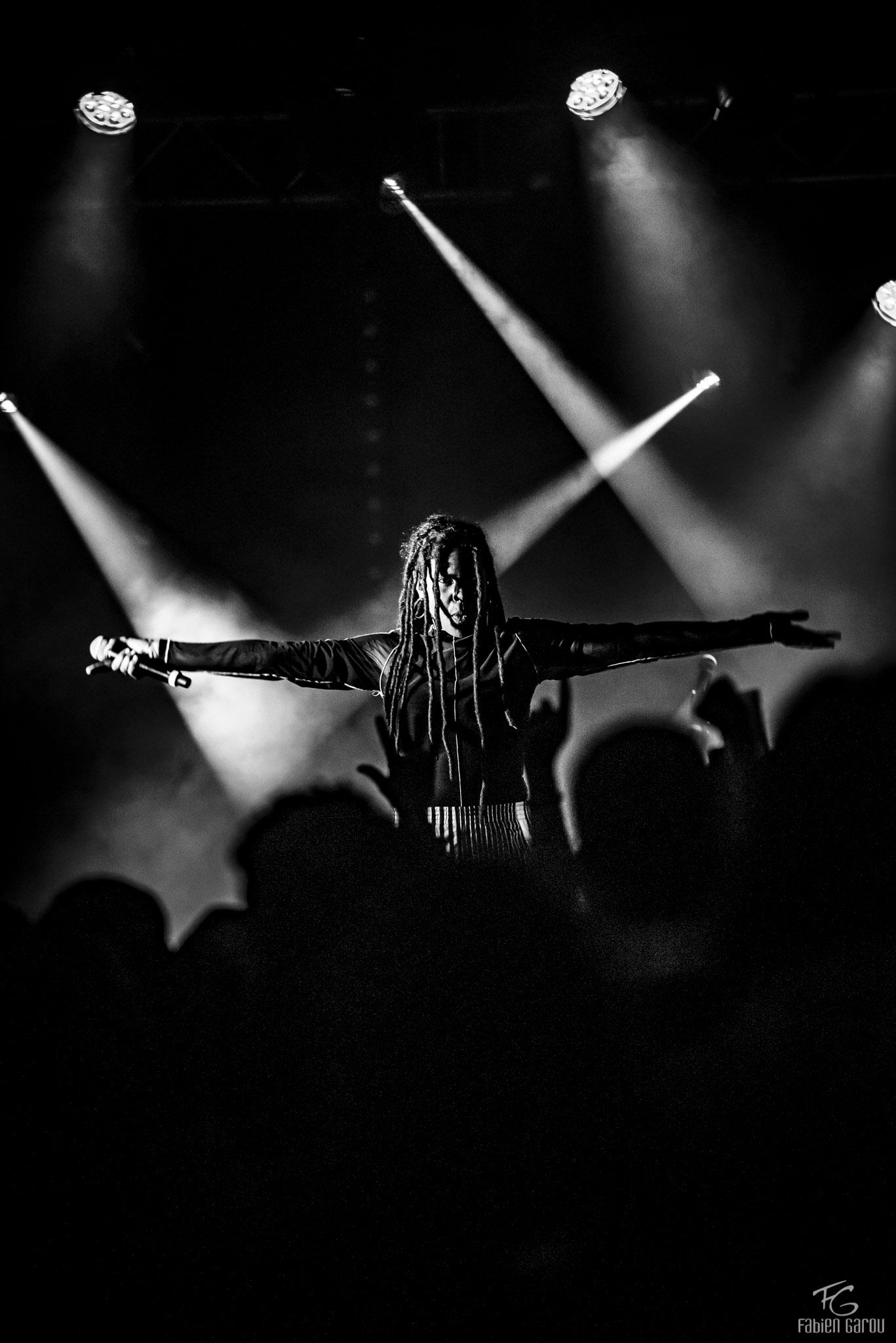 Concert - Fabien Garou Photographie